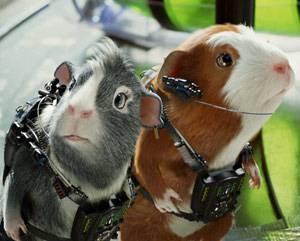Les cochons d'Inde de Mission G, réalisé par Disney
