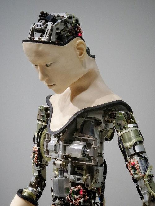Robot Alita